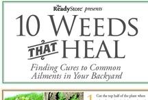 Health and Detox