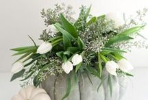 Floral Designs / by Samantha Lahman
