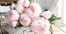 flower power love / bouquets, gardens, inspiring spaces