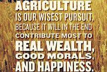 Why We Do What We Love / by Currey Farms