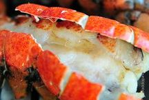 Seafood on the Grill / All about grilling/smoking/BBQing seafood