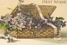 Inspiration cartes florales