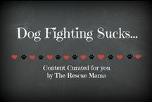 Dog fighting sucks / This board is a collection of articles and information about ending dog fighting.  I DO NOT POST GRAPHIC PHOTOS HERE!