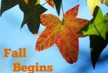 Fall Begins / #Fall, #Autumn #harvest  All things that change with the weather.