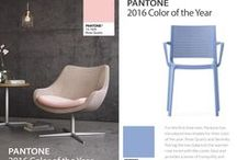 Pantone Color of the Year 2016 / by Tarkett Residential (N. America)