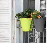 Jardiner en ville / Il y a toutes sortes de manières de s'entourer de verdure en ville, qu'on est un grand espace ou une simple Juliette. Voici quelques exemples.