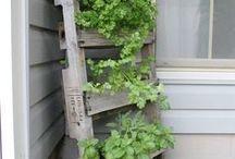 GARDEN / Ideas inspiration for garden improvement
