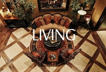 Spaces - Living & Dining Rooms / Great living and dining room remodel or new construction ideas.