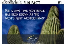 Scottsdale Fun Facts / Fun facts about the beautiful city of Scottsdale Arizona.