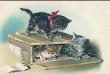 Vintage Fauna / Animal images from a bygone era