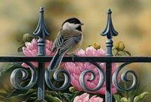 ART Fauna