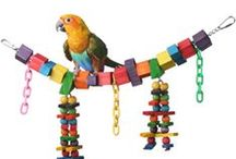 Medium Bird Toys / Pet birds of all sizes need to have a good variety of destructible, interactive, comfort, exercise and foraging toys to ensure their optimal mental and physical well-being.  We specialize in offering destructible toys with easily chewed components perfect for medium birds including balsa, pine and natural vine materials.   Toys in the medium bird category are great for Ringnecks, Conures, Quakers and Caiques.
