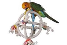"""Swings & Bungies for Your Bird / Just like we humans use a lot of different equipment in a fitness club to ensure we get a full body workout, birds need a variety of toys that stimulate the exercise of different parts of their bodies. Swings and Bungees challenge their balancing skills and ladders and ropes promote legwork due to increased climbing activity.  A """"must have"""" toy for every bird!"""