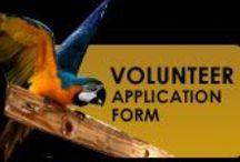 Rescues, Sanctuaries & Conservation / We support parrot Rescue, Adoption & Conservation!!!