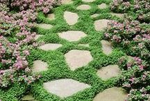 Garden Pathways / Garden paths, meandering trails through the woods leading to magical places where fairies roam