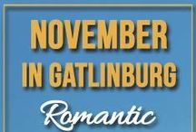 November Things to Do / Things to do in Gatlinburg, Pigeon Forge and Sevierville Smoky Mountains November 2014