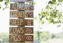 Here's Your Sign / Hand lettered signs