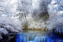 Images of WINTER / Winter - The Frosty Season