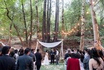 Cathedral Grove Weddings / Weddings in our Cathedral Grove area at Saratoga Springs in Saratoga, CA