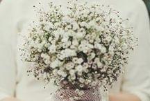 bouquet / wedding inspirations