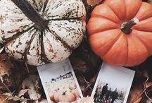 FALL INSPO / favorite fall inspo