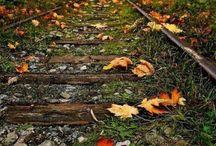 True Autumn / True Autumn examples and inspiration