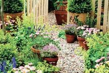Everything to do with the Garden Ideas / Lot's of Garden Ideas / by Sandra Jarrold