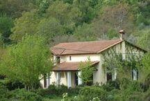 Cottage / Cottage