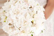 Ślub w bieli / Najpiękniejsze inspiracje białego ślubu. Ślub w bieli, biały bukiet ślubny, biały tort weselny, białe dekoracje weselne -> wszystko można tu znaleźć