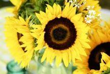 Ślub z motywem słonecznika / Najpiękniejsze inspiracje na ślub i wesele z motywem słonecznika: bukiet śluby słonecznikowy, dekoracje weselne ze słonecznikiem, żółty ślub i wesele