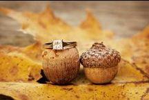 Ślub i wesele jesienią / Ślub i wesele jesienią to ślub z kasztanami, żołędziami i złotymi liśćmi w tle. Przepiękny i pachnący. Tu znajdziecie wybrane inspiracje, polecamy też nasza tablicę ze ślubem leśnym