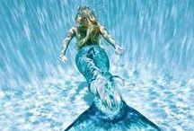 mermaid♡