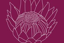 Craft ideas - Protea Power / A collection of pretty protea craft items, photos, stockists & ideas