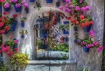 Garden Ideas / by Tanya Atkinson