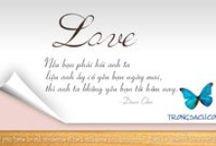Đi tìm tình yêu đích thực