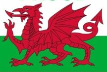 Wales~Cymru, My Homeland / Wales - Where I was born, raised, & still live <3 Cymru am Byth / by Siân Islip