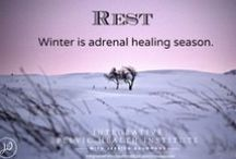 It's Winter... Adrenal Healing / Winter foundation cleanse friendly recipes.  Support for healing adrenal fatigue with food and lifestyle.