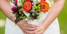 Wedding Photos / 0