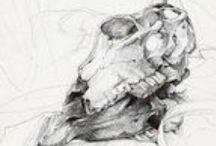 Drawings - Ewelina L. / by Ewelina Lesik.