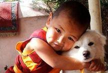 Heart MELTING / Irresistible cuteness