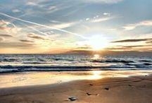 Where the ocean meets the shore...