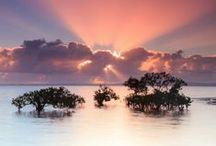 Photography - Beautiful photographs
