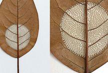 Leaf, Leaves, Leafy / Inspiration:
