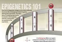 Ch 3: Epigenetics