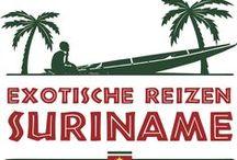 Rondreizen door Suriname / Jij bent toe aan een heerlijk verblijf in het zonovergoten Suriname. Zorgeloos genieten van geheel verzorgde rondreizen. Mooie spectaculaire boottochten en ontmoetingen met dolfijnen. De jungle vormt het unieke decor, met woudreuzen, lianen en oerwoudgeluiden van brulapen en krijsende papegaaien, van jouw schitterende rondreis. De zwoele nachten, exotische gerechten en de gastvrije bevolking staan garant voor een onvergetelijke tijd.