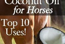 DIY For Horses / How to do things yourself for you and your horse.