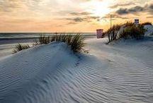 """Langeoog - Strand / Reif für die Insel? - Rauf auf die Insel! Entschleunigen Sie auf unserer autofreien Nordseeinsel und genießen Sie """"Natur pur"""" im Nationalpark Niedersächsisches Wattenmeer."""