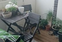 My Oasis ♥ / My Balcony