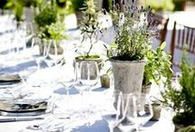 Garden Weddings / Let your guests take a moment o smell the roses with a whimsical garden wedding! garden weddings, diy garden weddings, outdoor weddings, flowers, flower arches, whimsical weddings. #weddings #gardens #diy