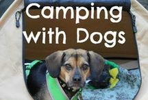Camping with Pets / What's camping without your favorite companions?